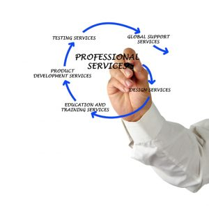 Professional Services Jobs